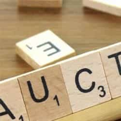How Do Property Auctions Work?