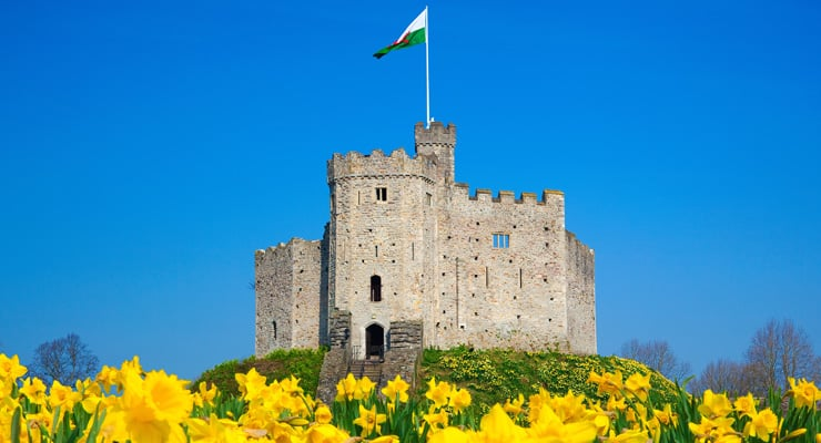 Cardiff Castle on a summer day with daffodils in the foreground. A Norman keep in South Wales