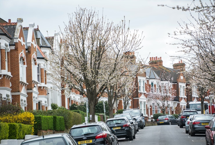 A tree-lined street in Wimbledon with white townhouses.