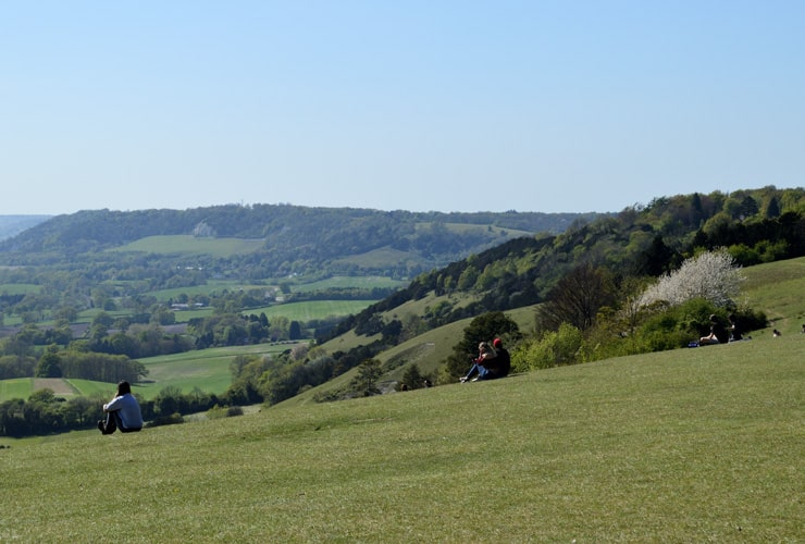 A view of Surrey from Reigate Hill